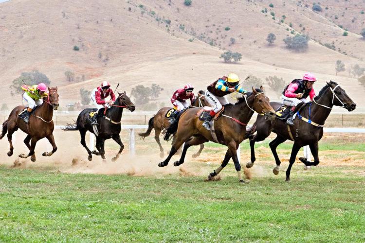 Horse Racing - Looking Back at Last Triple Crown Winner