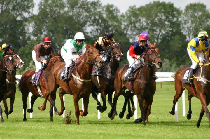 Horse Racing - Review 2007 Kentucky Derby